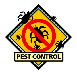 Ideas for a successful pest control business