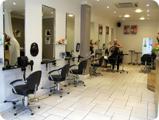 Setting up a professional hair salon
